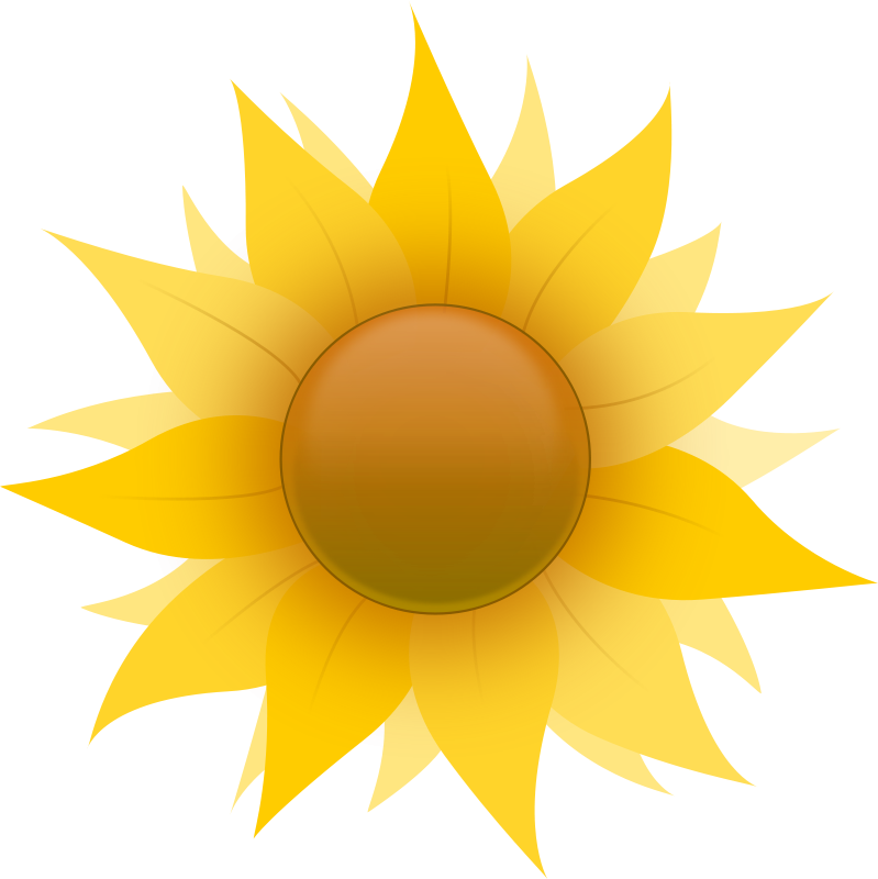 Free Sunflower