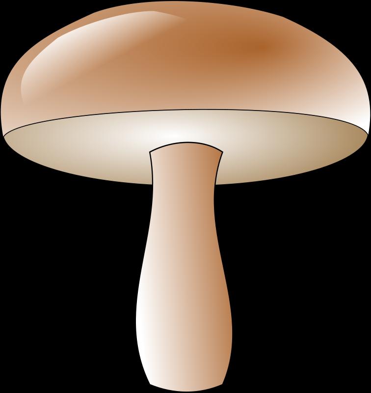 Free champignon