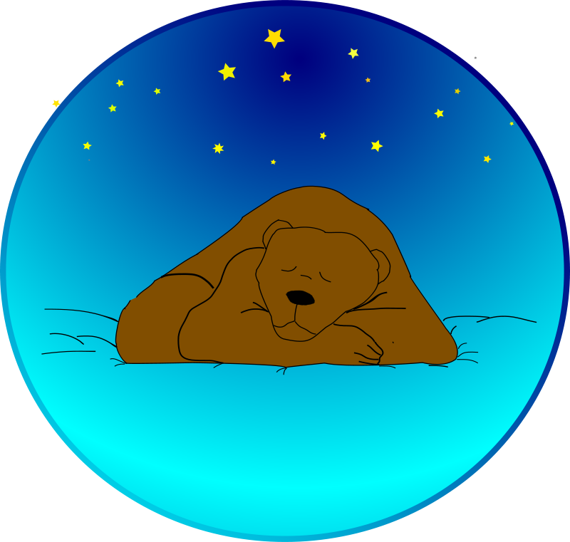 Free Sleeping bear under the stars