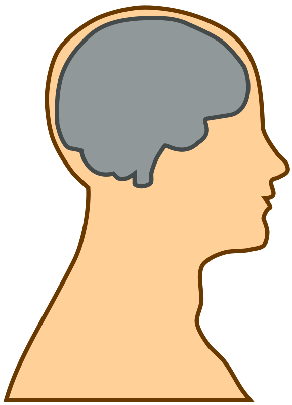 Free Silhouette of a brain