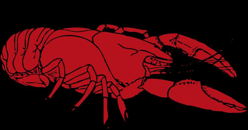 Free crayfish