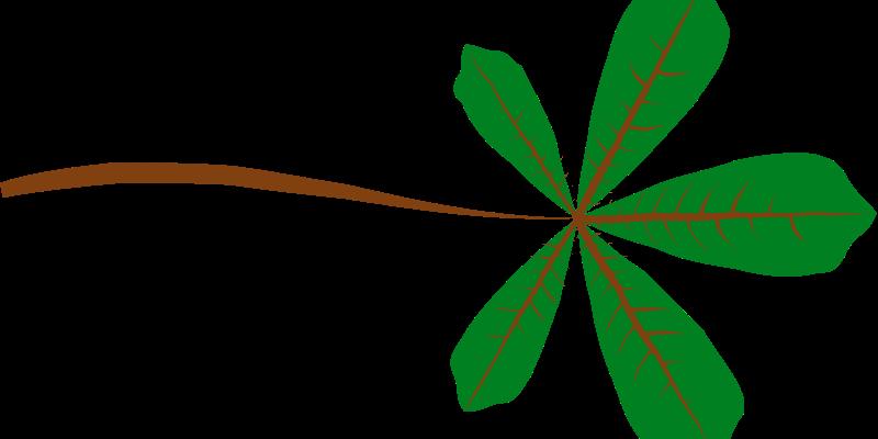 Free Palmate Leaf (5 lobed)