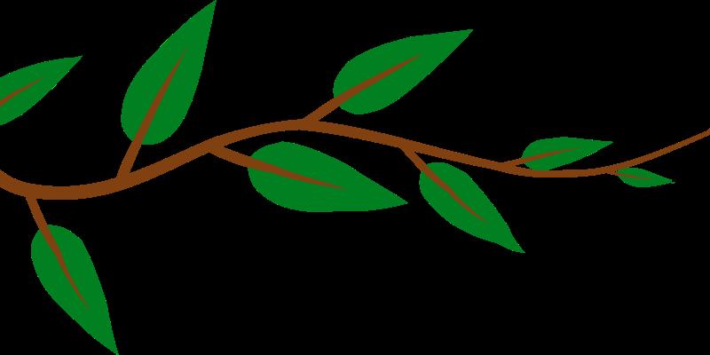 Free Alternate Leaf