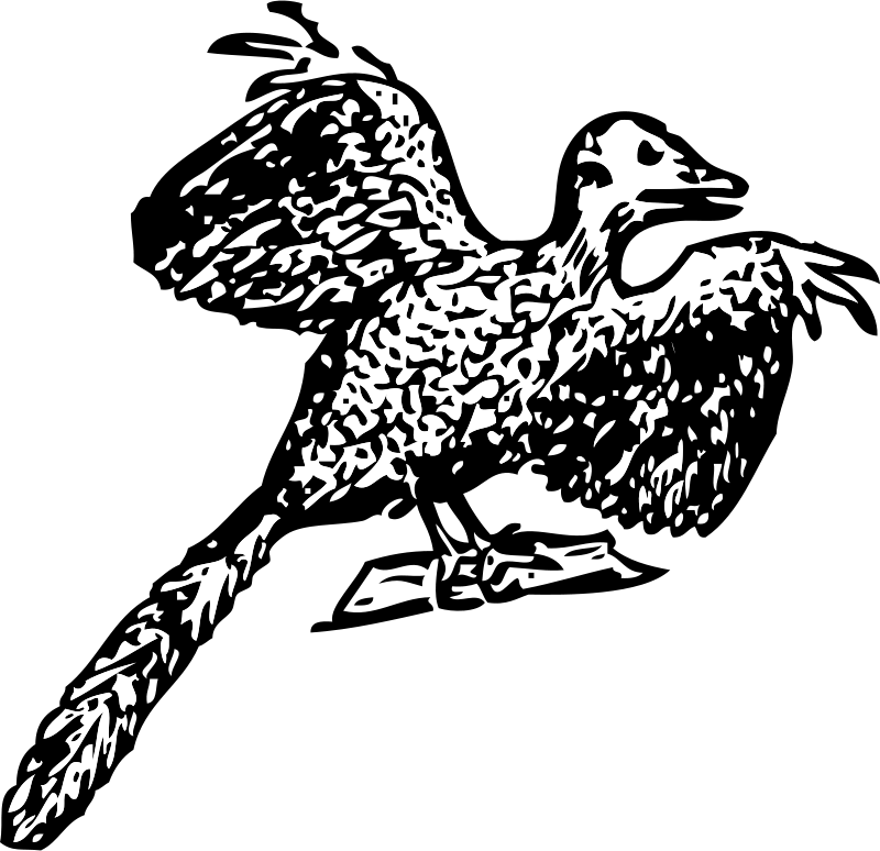 Free Archaeopteryx
