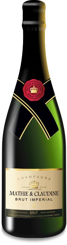 Free Clipart: Champagne bottle | remi_inconnu