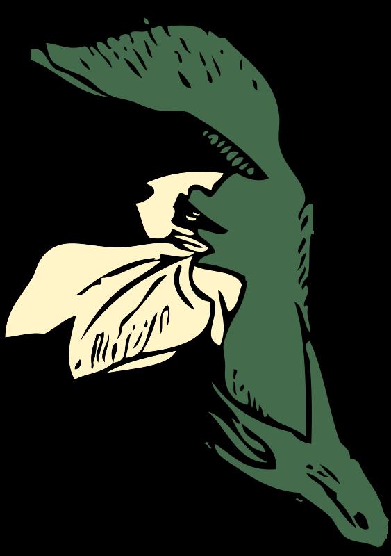 Free dead-nettle