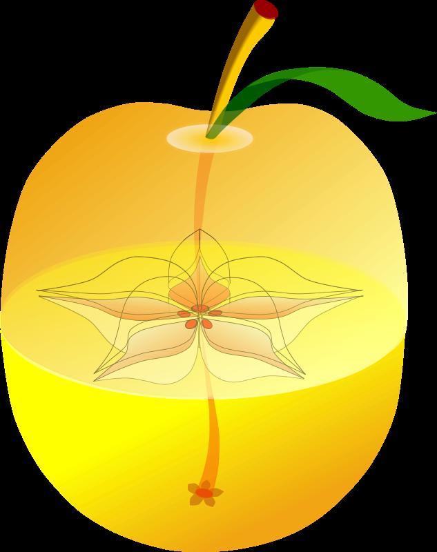 Free AppleAnatomy