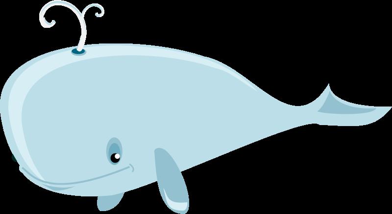 Free cartoon whale