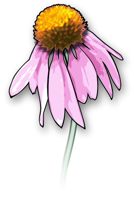 Free Flower2