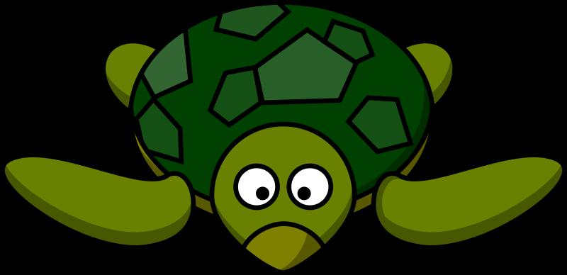 Free Cartoon turtle