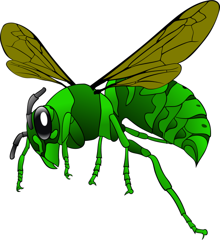 free clipart green hornet mabroox rh 1001freedownloads com hornet clip art free hornet images clip art