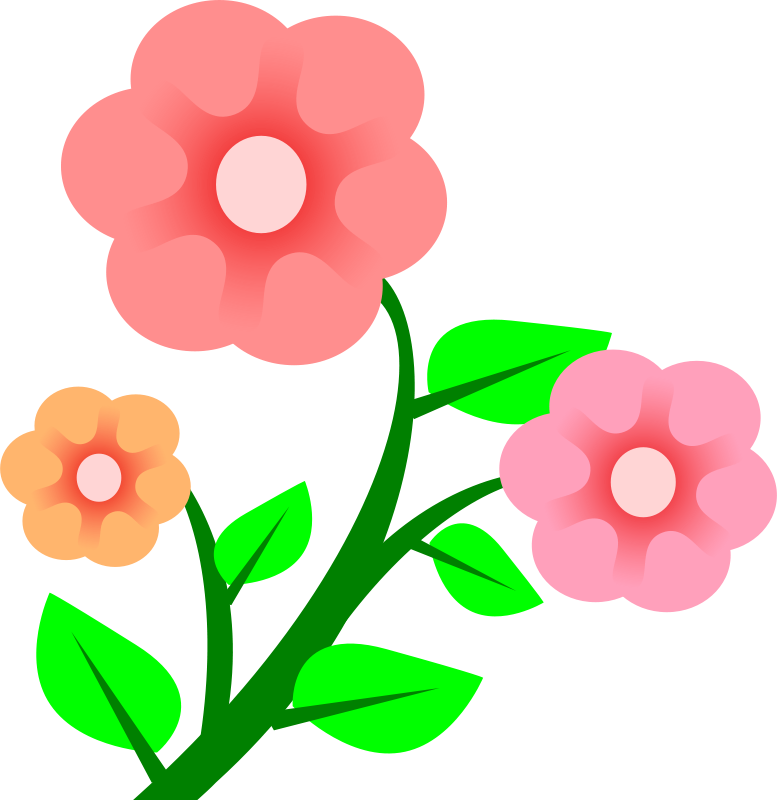 Free 3 flowers