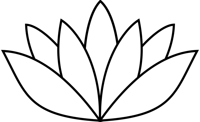 Free white lotus flower