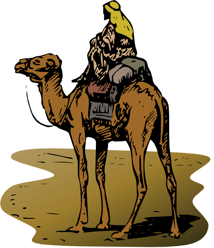 Free Camel with Rider