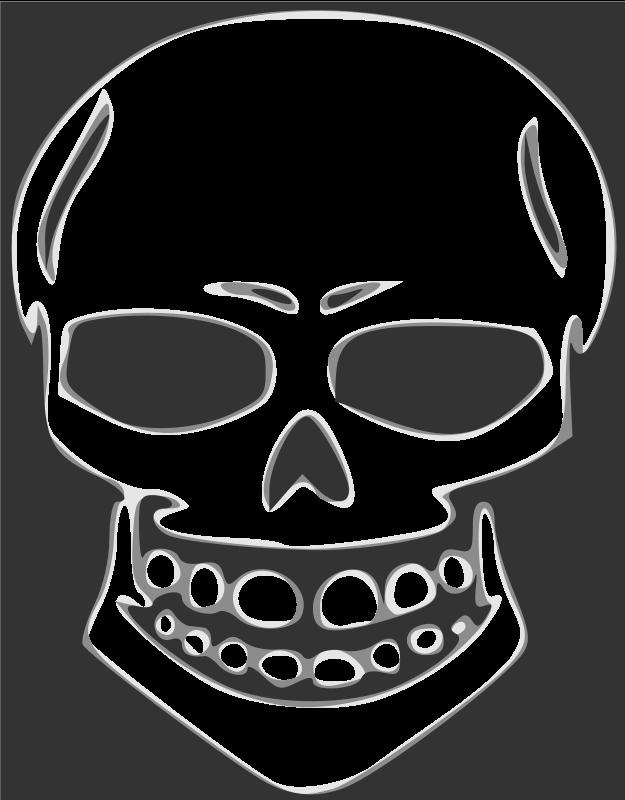 Free Skull human X-ray