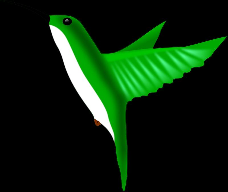 Free Hummingbird