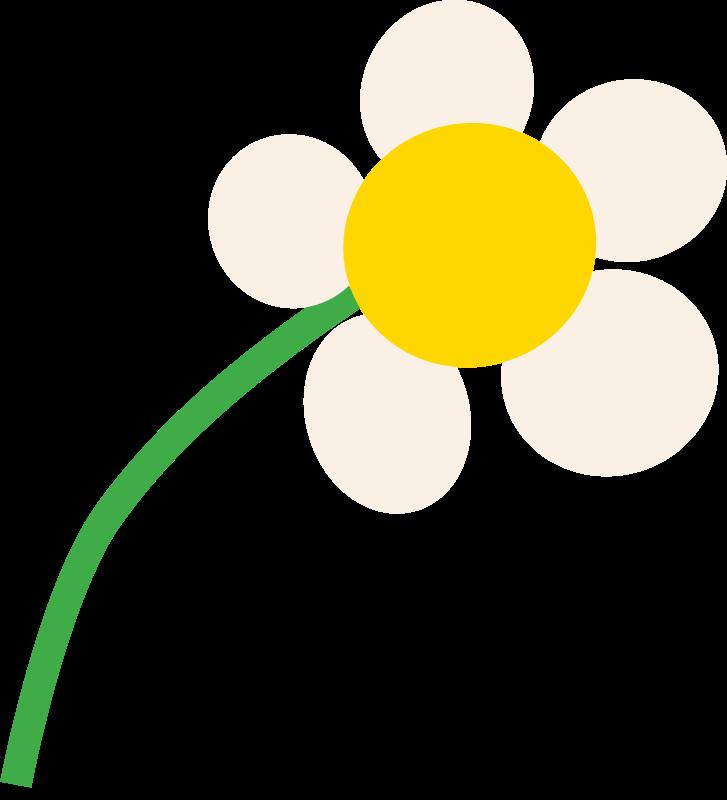 Free daisy