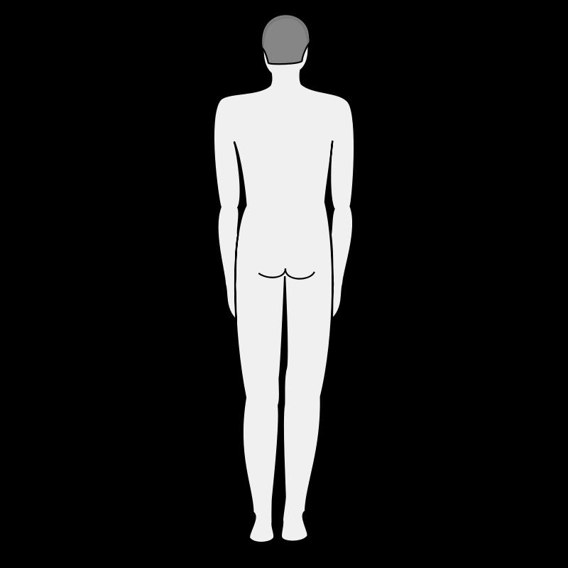 Free Male body silhouette - back