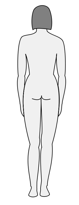 Free Female body silhouette - back