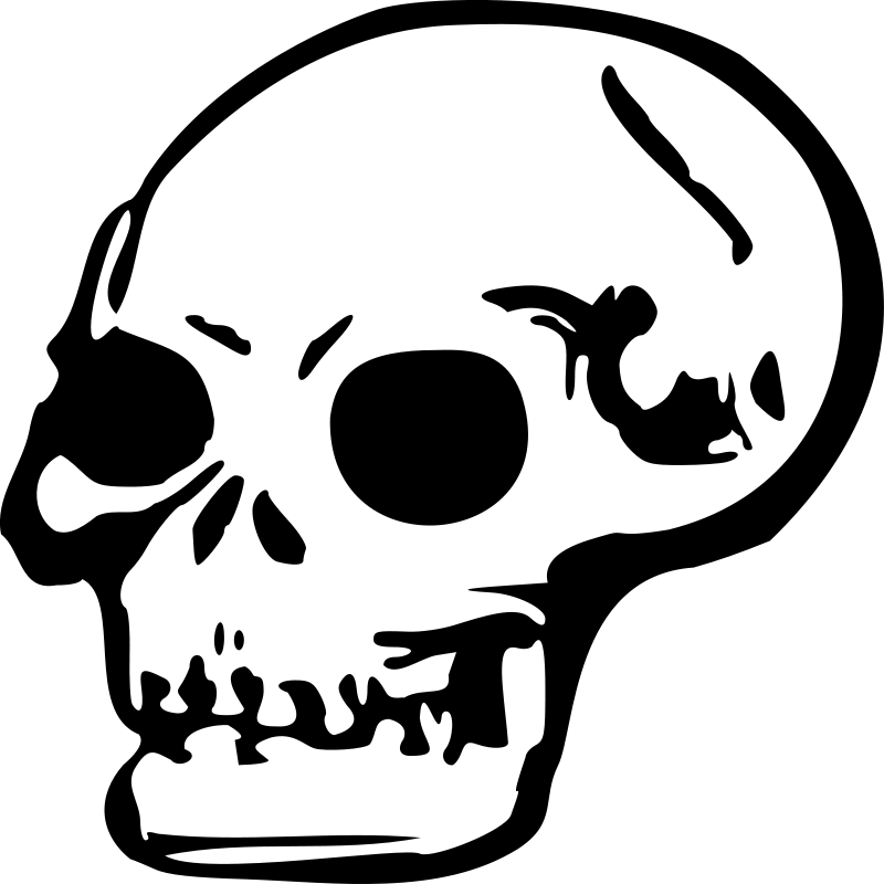 Free Clipart: Skull | qubodup