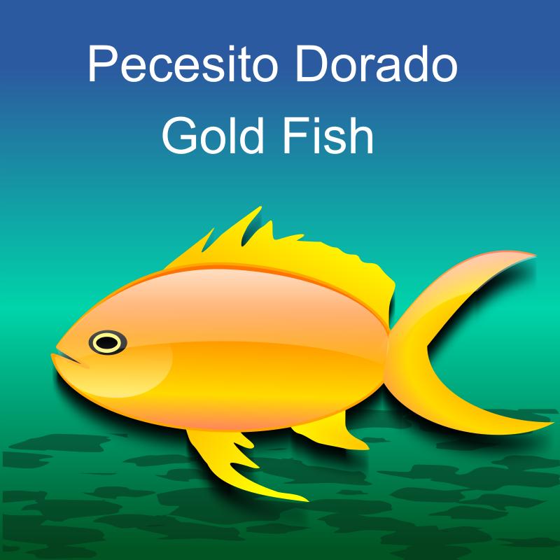 Free Pez dorado (gold fish)