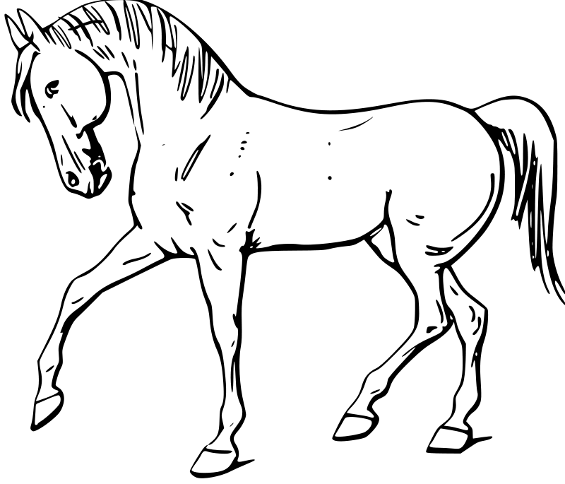 Free Walking horse outline