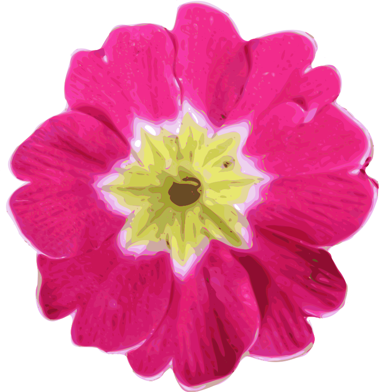 Free flower-11