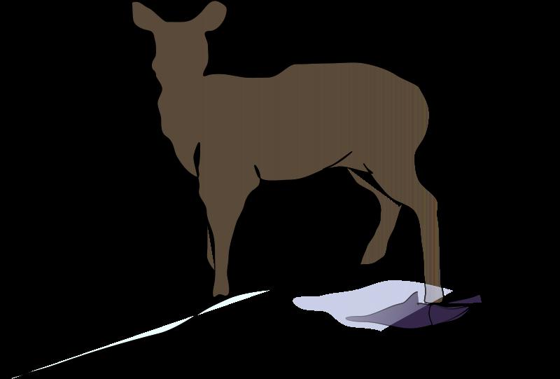 Free Deer Clipart