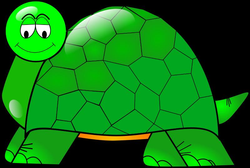 Free Turtle
