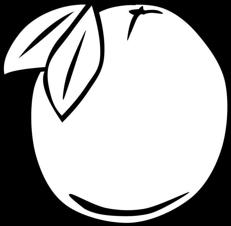 Free Simple Fruit Orange