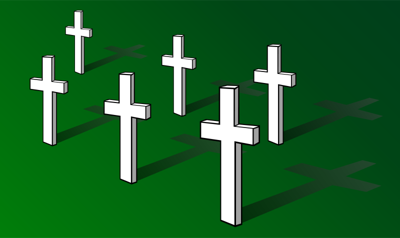 Free Crosses on Field (Remembrance Day)