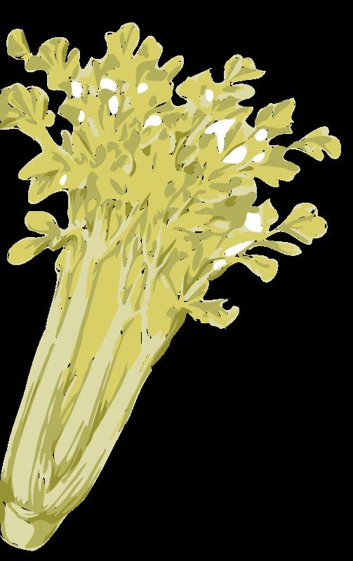 Free celery