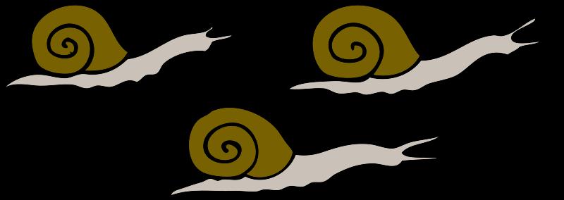 Free 3 snails