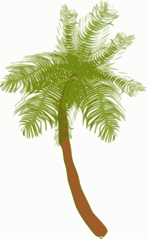 Free Coconut tree