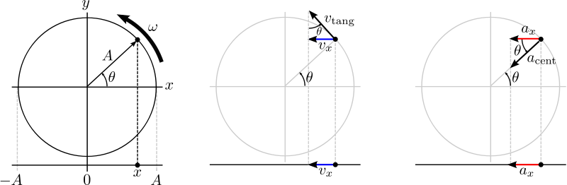 Free shm projection of circular motion