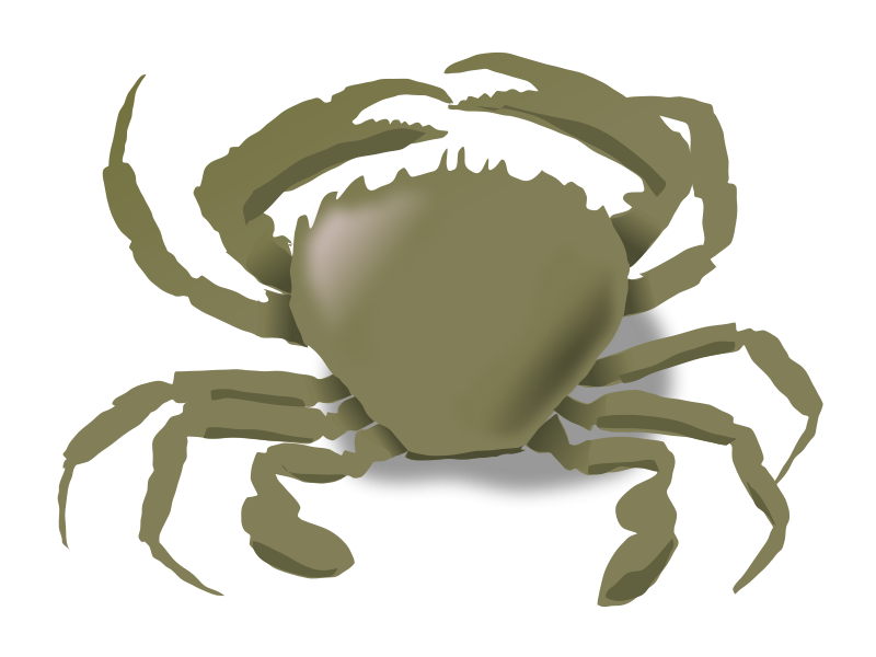 Free Clipart: The crab | addon