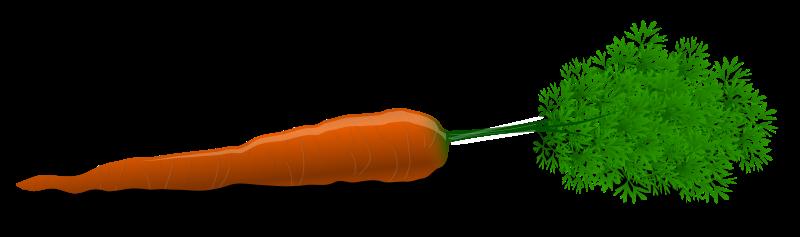 Free Carrot