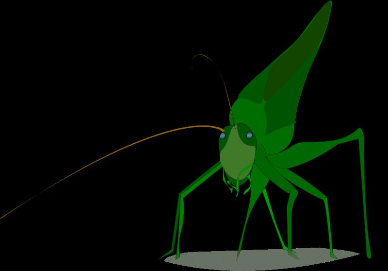 Free grasshopper