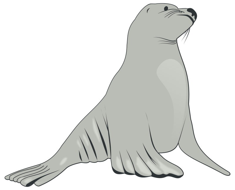 free clipart sea lion valessiobrito rh 1001freedownloads com Zebra Clip Art steller sea lion clipart