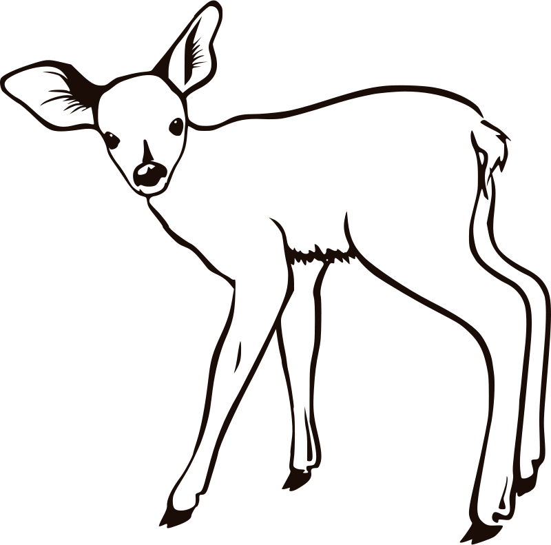 Free fawn outline