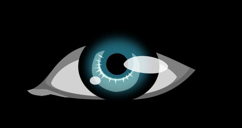 Free olhar - the eye