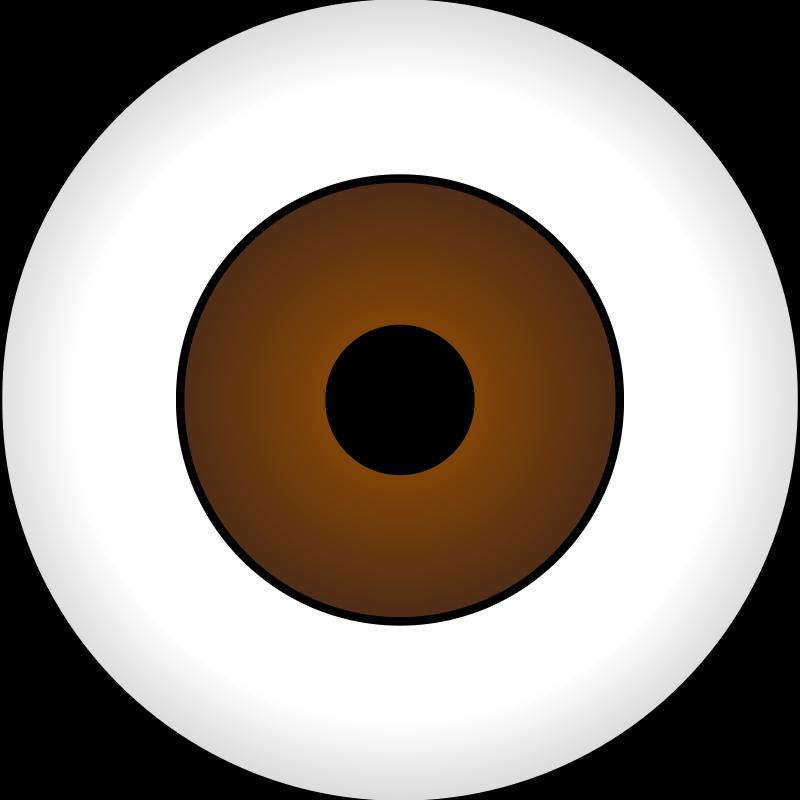 Free Olhos Castanhos/ Brown Eye