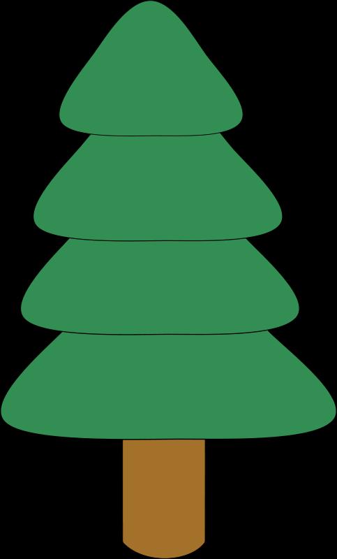 Free spruce1