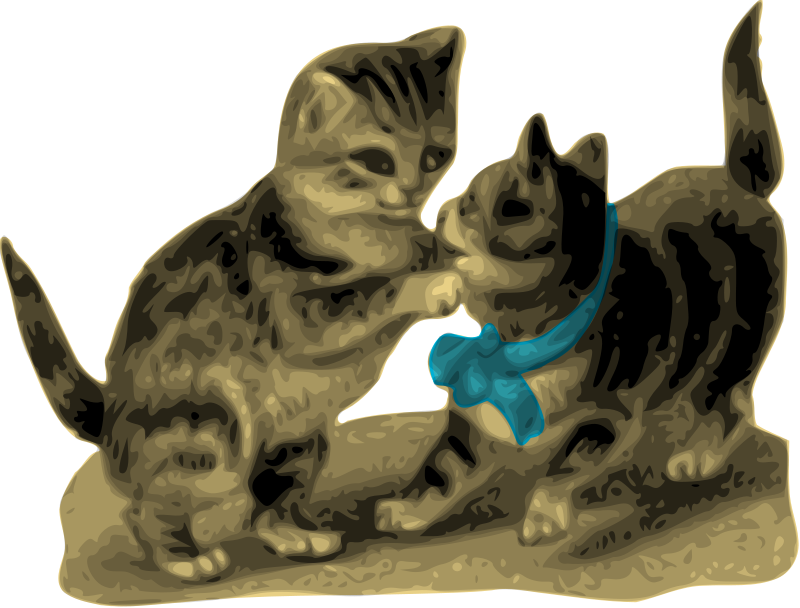 Free Kittens, One with Blue Ribbon