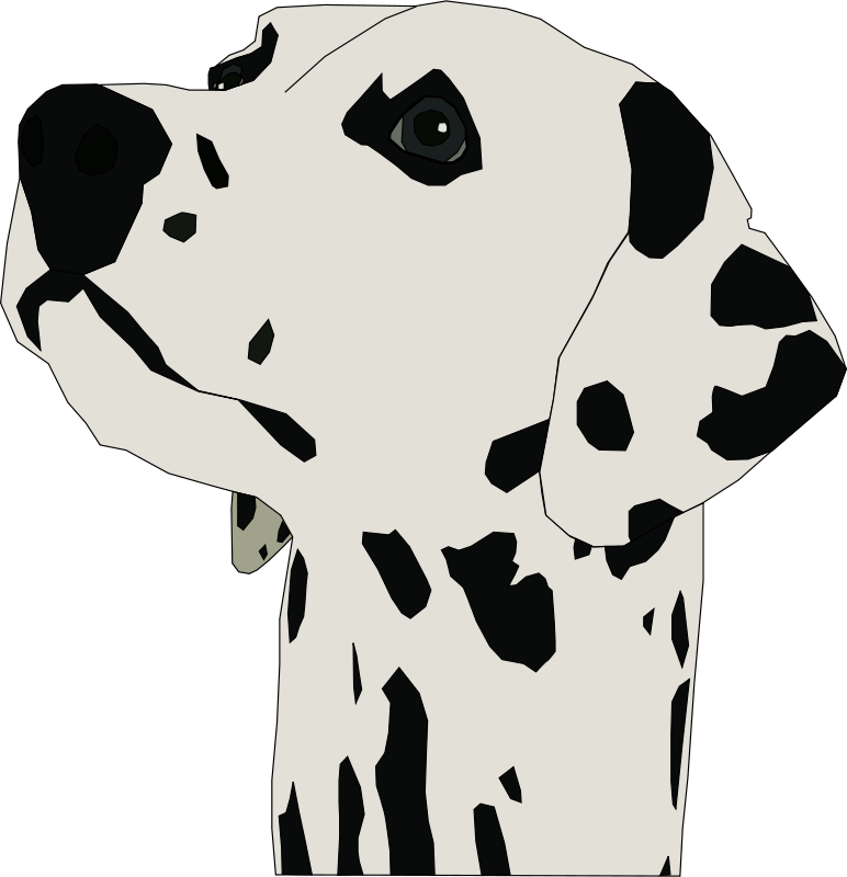 Free dalmatin head