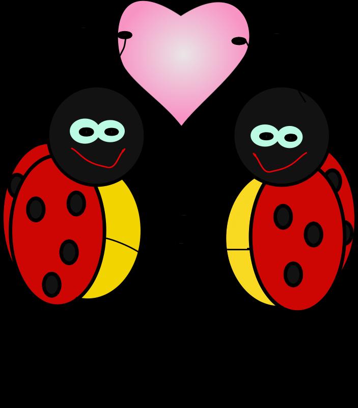 Free lady bugs
