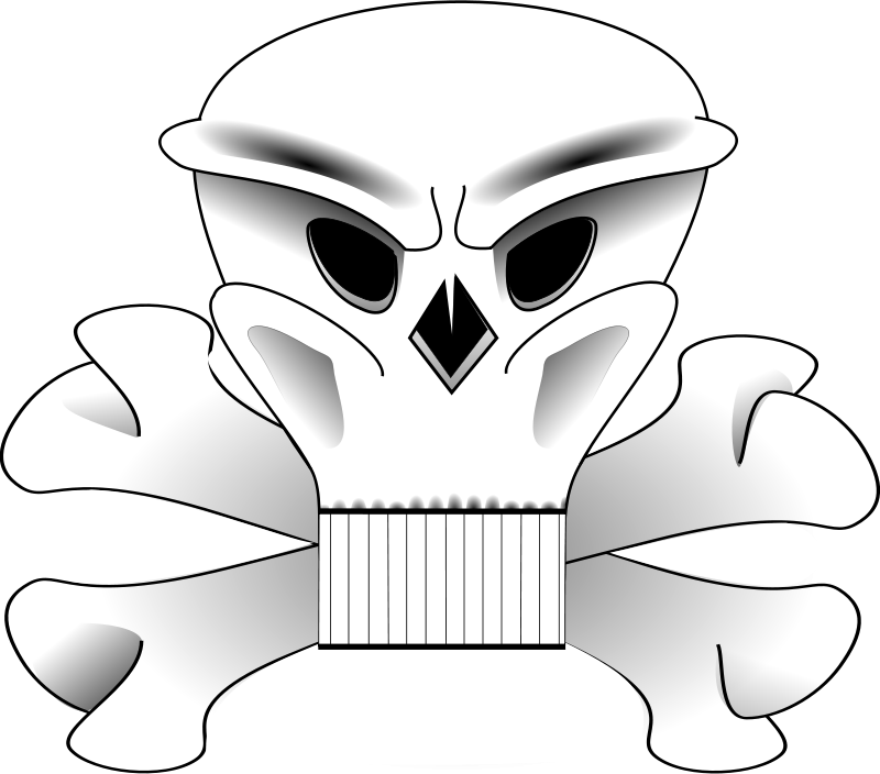 Free skull and bones 2