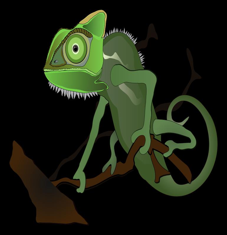 Free Green chameleon