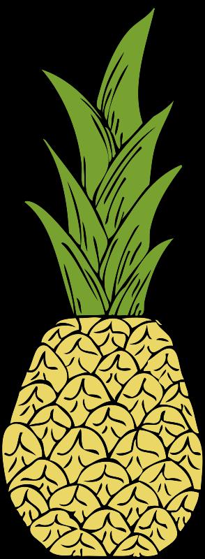Free pineapple