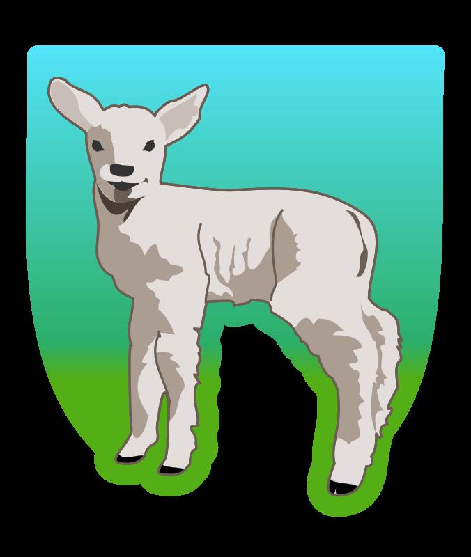 Free young lamb
